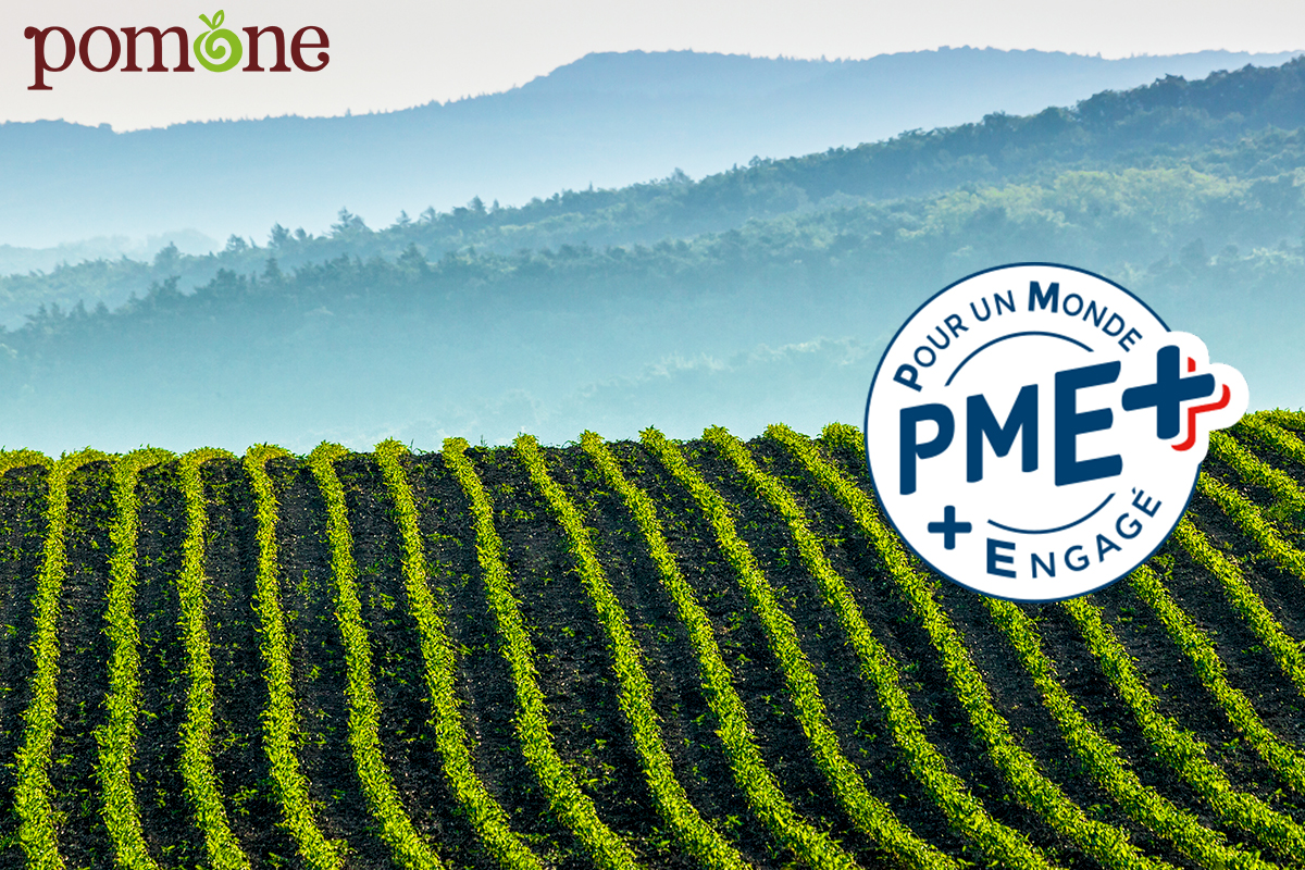 What is the French PME+Label?