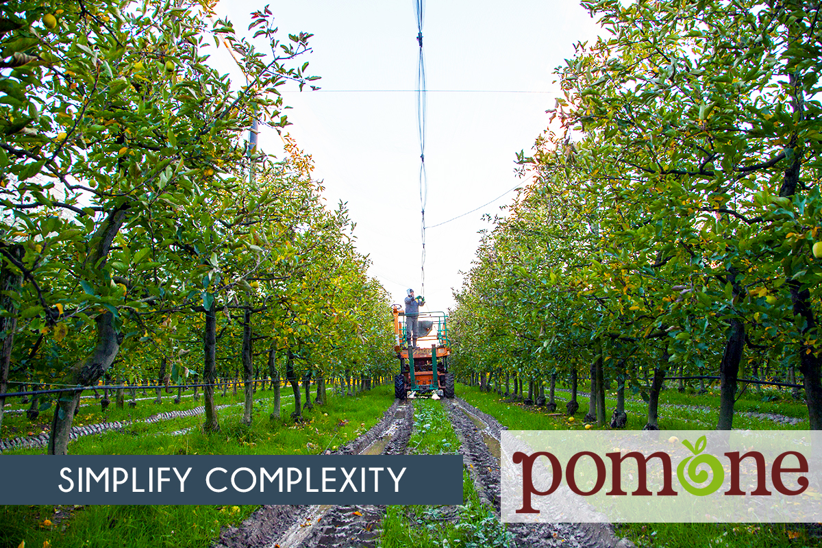 Simplify complexity